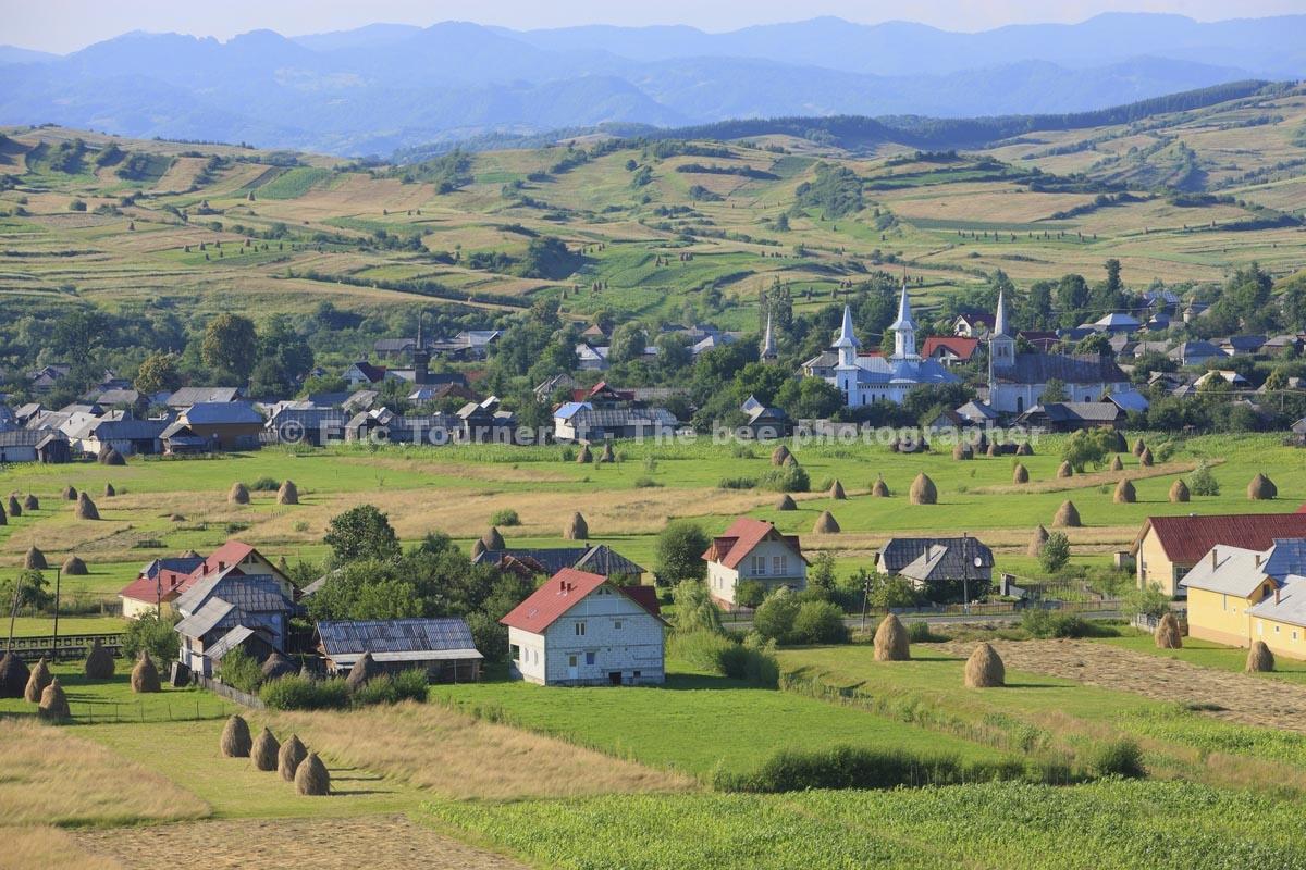 Roumanie: le miel de Bohème