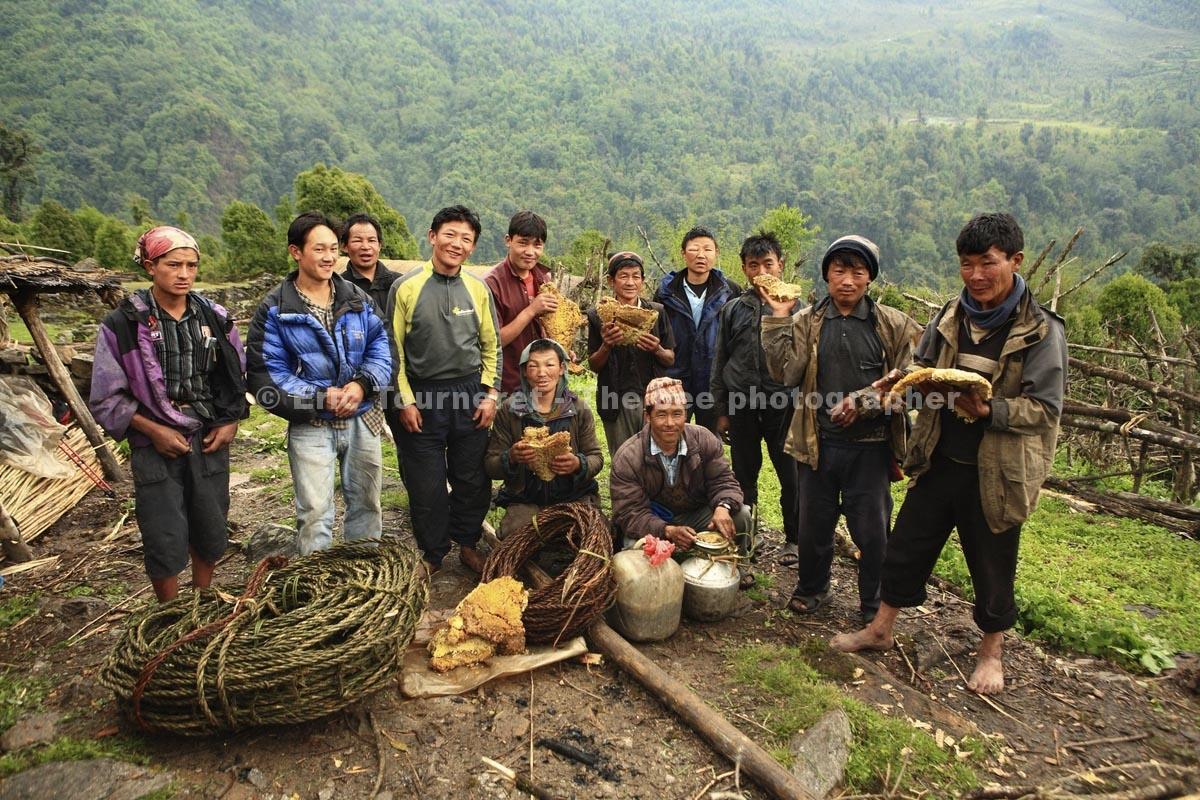 Népal: la chasse au miel des hommes-tigres