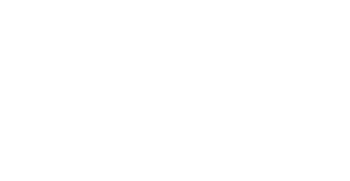 The Bee Photographer